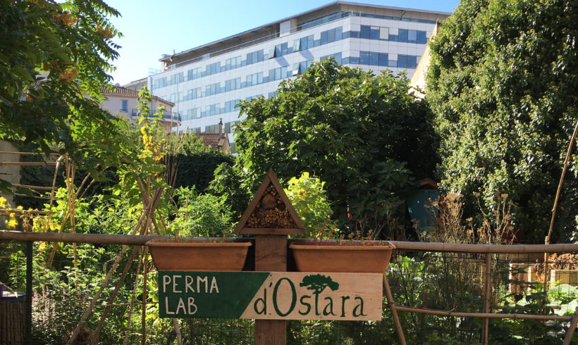 06-10/07/20 Formation 5 jours permaculture urbaine